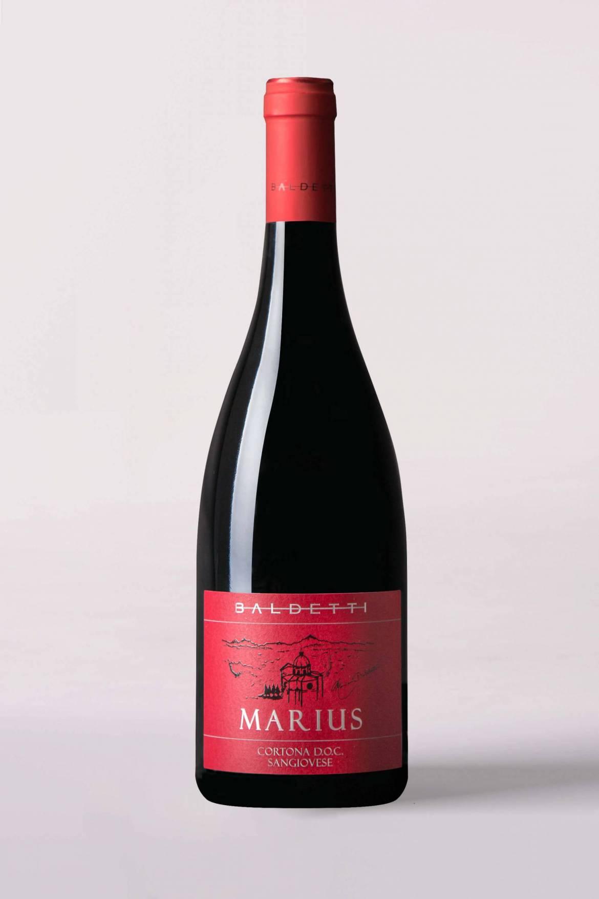 Marius-scaled.jpg